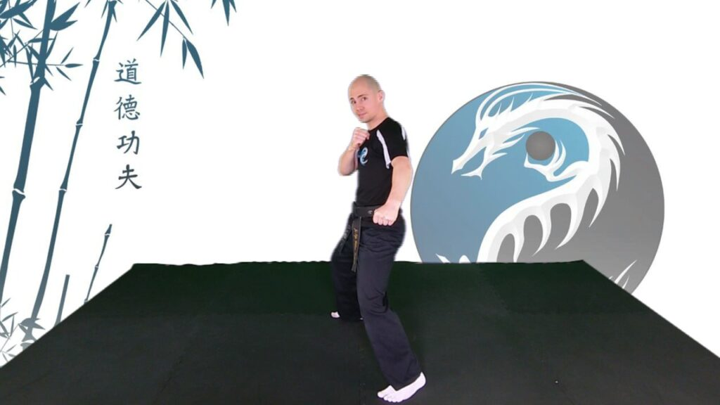 man doing drop punch kung fu living video - learn kung fu online