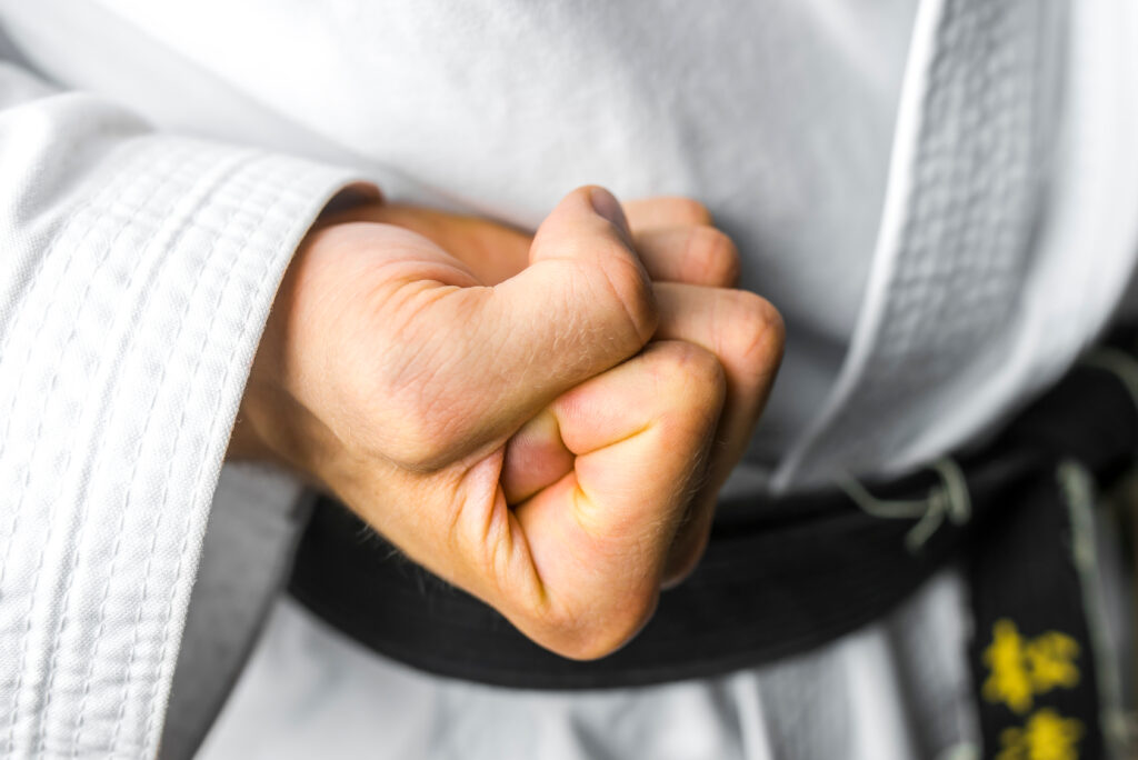 martial artist holding fist tight ready for karate punch - learn kung fu online