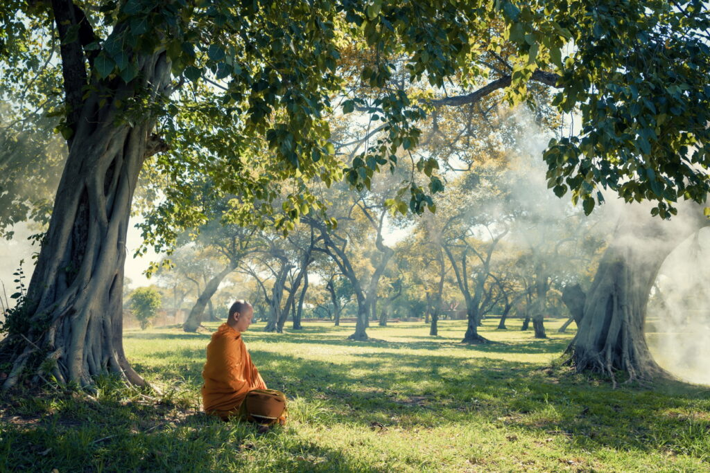 Asian monk under a tree, meditating in area around wilderness - learn kung fu online