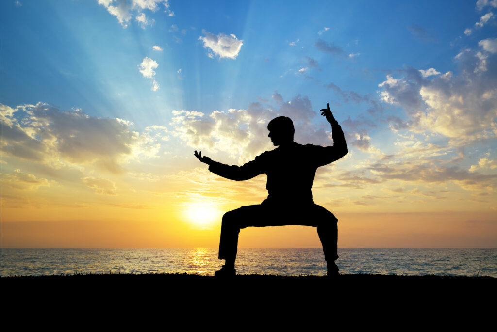 martial artist doing kung fu on beach sunset - learn kung fu online