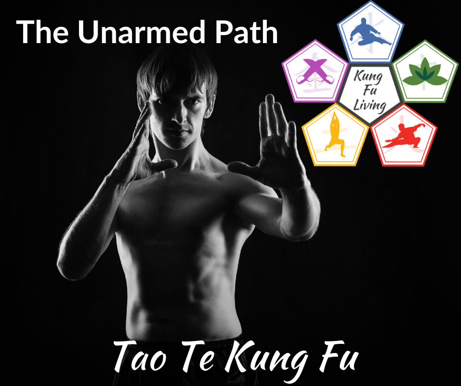 Kung Fu Living unarmed path. man in kung fu stance