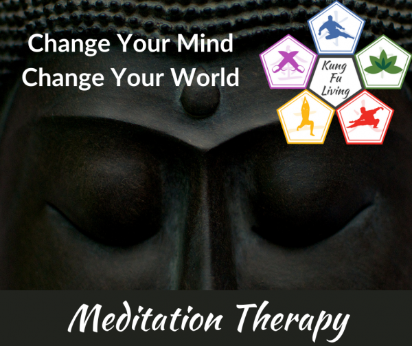 change your mind change your world 10 day meditation therapy course