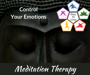 control your emotions 10 day meditation therapy course