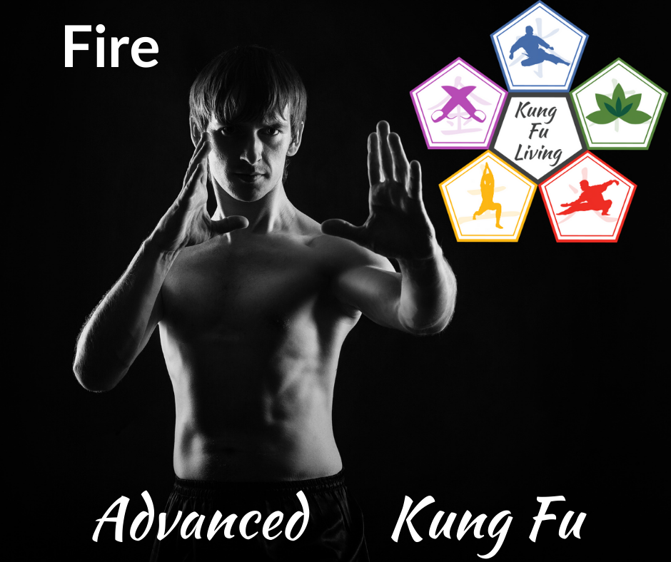 Advanced Unarmed Kung Fu Fire Module Course