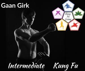 Intermediate Unarmed Kung Fu Gaan Girk Module Course