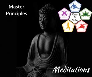 Master principles online meditation course