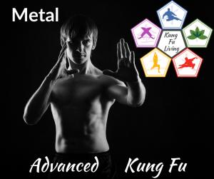 Advanced Unarmed Kung Fu Metal Module Course