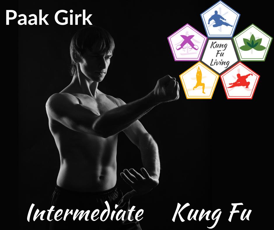 Intermediate Unarmed Kung Fu Paak Girk Module Course