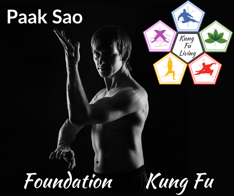 Foundation Unarmed Kung Fu Paak Sao Module Course